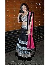 Astha Fashion Velvet & Net Embroidered Lahenga (Black Pink)