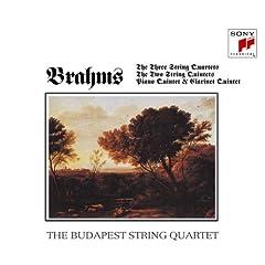 ブダペストSQ演奏 ブラームス:弦楽四重奏曲全集/五重奏曲集(4CDs)の商品写真