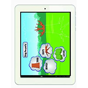 Skytel 801 Tablet (8 inch, 4GB, Wi-Fi+ Voice Calling), White