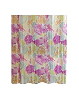 Ex-Cell Gem Brush PEVA Shower Curtain, 70 by 72-Inch