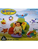 Baby Play Gym Mat (Blossom Farm Sit Me Up Baby Cosy)