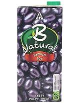 B Natural Juice - Mixed Jamun Joy, 1 L Carton