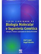 Texto Ilustrado De Biologia Molecular E Ingenieria Genetica: Conceptos, Tecnicas Y Aplicaciones En Ciencias De La Salud