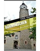 Dornröschen/Aschenputtel/Die Rosenlegende der HeiligenElisabeth: Theatermärchen