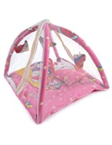 White Swan Pink Baby Play Gym With Net ( Age Group: 1-12 Months )