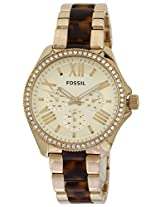 Fossil End-of-Season Analog Gold Dial Unisex Watch AM4499