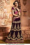 Bollywood Replica Model Net and Micro Velvet Lehenga Saree In Brown Colour NC1043