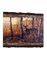 Walnut Hollow InGrained Art -  Whitetail Buck by Greg Alexander (Wall Art on Wood Panel)