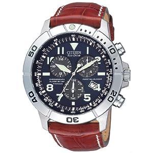 Citizen Wrist Watch (BL 5250-11L)