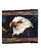 Walnut Hollow InGrained Art -  A Threatened Symbol by Carl Brenders (Wall Art on Wood Panel)