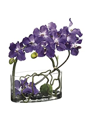 Allstate Floral Vanda Orchid, Twig & Moss Ball in Glass Vase, Purple