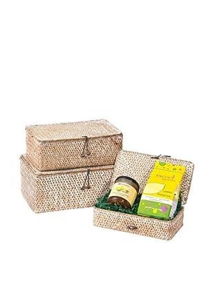 Skalny Set of 3 Rectangular Seagrass Storage Boxes, White