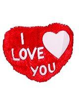 Selfie red color Big heart Fur