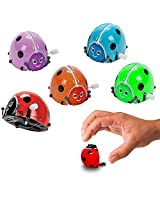 Toy Cubby Wind Up Colorful Flipping Bugs 6 Pieces
