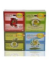 GTEE Hibiscus Tea Bags & Moringa Tea Bags & Tulsi Tea Bags & Green Tea Bags-Mints (10 Tea Bags X 4 PACKS)