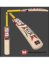SS - SS 281 (Size 6) Kashmir WillowJunior Cricket Bat