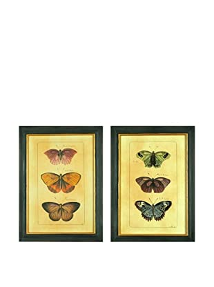 Set of 2 Framed Reproduction Butterfly Prints