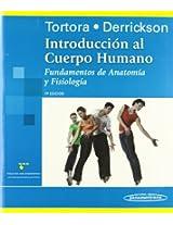 Introducción al cuerpo humano / Introduction to the Human Body: Fundamentos de anatomía y fisiología / The Essentials of Anatomy and Physiology