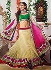 SimpleSarees Embroidered Wedding Bridal Lehenga Choli