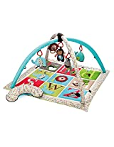 Skip hop ABC Zoo - Activity Gym (Multicolor)
