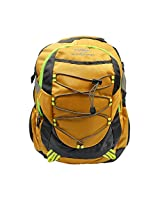 Donex Laptop Backpack 28 Litre nylon Yellow-Grey