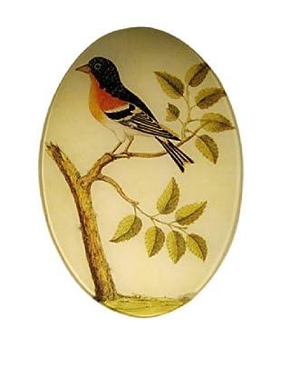 Twigs and Moss Orange Bird on Branch Glass Tray