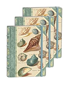 Punch Studio Set of 3 Library Journals (Shells)