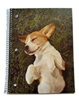 Staples Wide Ruled Animal Spiral Notebook ~ Backyard Bliss (70 Sheets, 140 Pages)