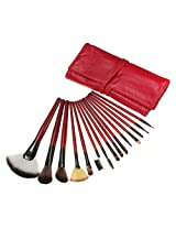 15pcs Cosmetic Makeup Powder Brush Set Foundation Leather Case (red)