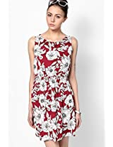 New Look Wine Printed Sleeveless Skater Dress New Look