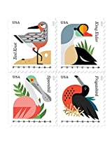 Coastal Birds Stamps ROLL OF 100 X POSTCARD Forever U.S. Postage Stamps USPS NEW