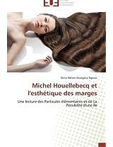 Michel Houellebecq Et L'Esthetique Des Marges