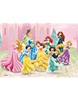 Disney Princess 500 Piece Jigsaw Puzzle (Pc058)