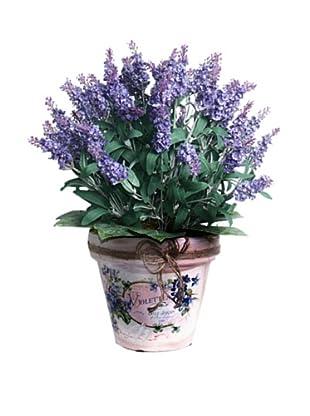 Lavender In Twine Pot (Lavender/Green)