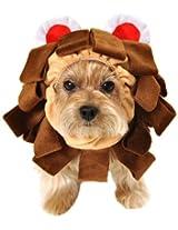 Anit Accessories 16-Inch Lion Dog Costume, Medium
