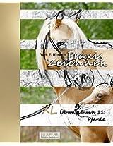 Praxis Zeichnen - XL Übungsbuch 11: Pferde: Volume 11