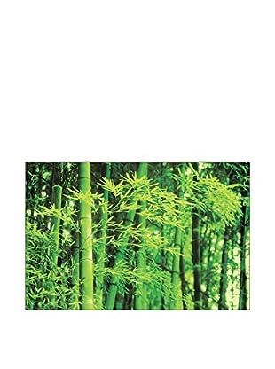 ARTOPWEB Wandbild Photography Collection Bamboo In Spring 115x175 cm