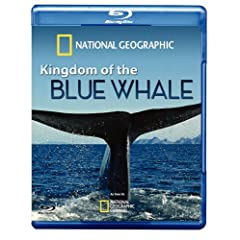 Kingdom of Blue Whale
