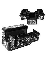 Aluminum Cosmetic Makeup Artist Zebra Carrying Train Case Lockable Storage Box