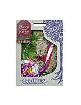 Make Your Own Queen Of The Fairies Crown By Seedling
