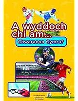 A Wyddoch Chi am Chwaraeon Cymru? (Cyfres a Wyddoch Chi)