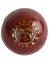 KKS Gold Youth's Leather Cricket Ball Standard (Red & White)