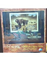 "Bo Newell ""Precious Water"" 1000 Piece Jigsaw Puzzle By Suns Out"