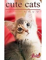 cute cats08 Somali