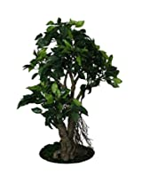 POLLINATION GREEN FICUS ARTIFICIAL PLANT