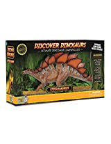 Stegosaurus Action Figure - Includes Real Dinosaur Bone Fossil!