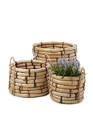 Wald Imports Set of 3 Oversized Buri Do Knots Planters, Natural