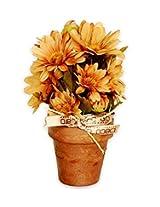 Decoaro Paper Pot with Orange Flowers