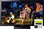Sony KLV-24P412B 60 cm (24 inches) Full HD LED TV