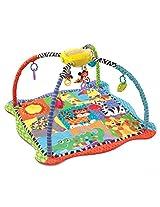 Playgro App Play Gro Zoo Gym (Multicolor)